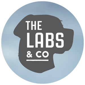 The Labs & Co.
